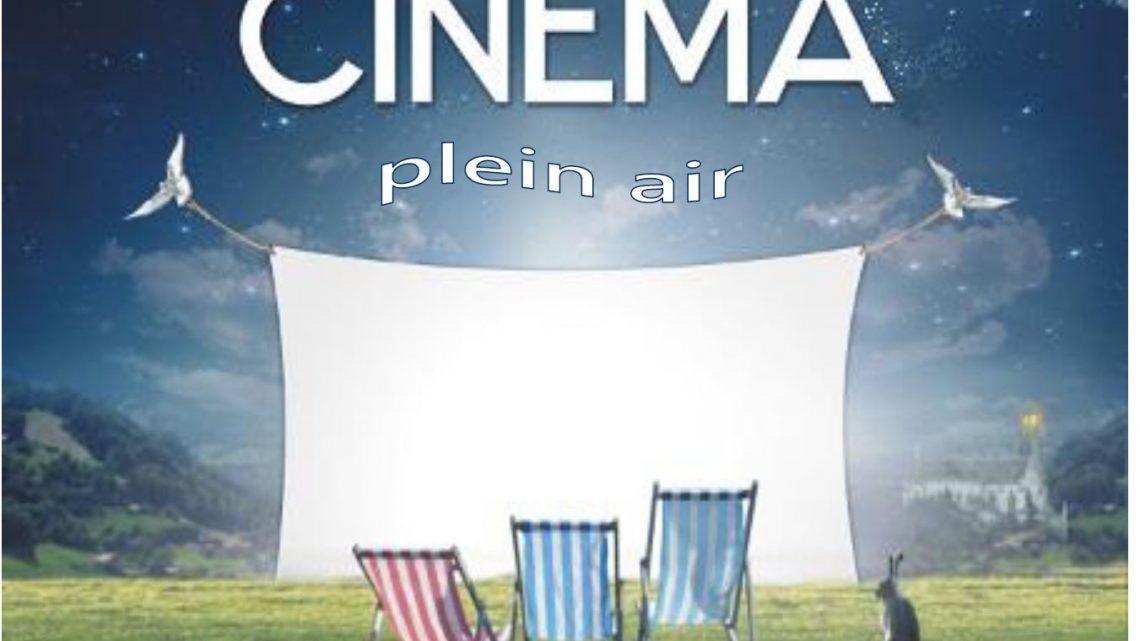 ENQUETE DE SATISFACTION CINEMA PLEIN AIR